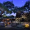 熱海で温泉だけでなく最高の食事を味わえる温泉宿ランキング!番組ヒルナンデスで紹介。