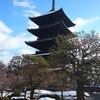 ランチでよく利用したお薦め9選、「京都・市内」編