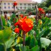 これでもう悩まない!?アンコールワットがあるカンボジアのシェムリアップでカンボジア人ガイドが選ぶ高級ホテルを紹介します!