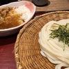 久々のたっぷりお昼はうどんにカレー! #新大阪 #杵屋 #カレー丼 #うどん