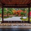 京都・洛中 - 蘆山寺の紅葉