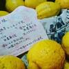 自家製レモンが届いた!@新潟キッチンビアンカ