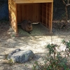 「動物園の準備と対策と」の話