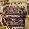 フェズのタンネリ見学(2018年モロッコ #5)