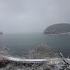 南三陸のへ旅2(ラムサール湿地登録地・志津川湾ーコクガンを訪ねて)