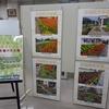 花と緑の環境美化コンクール 入賞花壇 パネル展 を開催しています