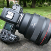 Canon「RF 85mm F1.2L USM」と「EF 85mm F1.4L IS USM」の比較レビュー〜RFレンズのエグさが鮮明に!〜