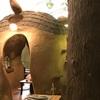 猫カフェに行ったよ