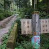 林道せの谷線(河内長野市)を走る