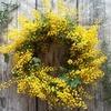 3月8日はミモザの花で「感謝」を伝える日