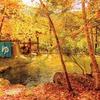 11月のカレンダーは合掌の森 中尾キャンプ場の混浴露天風呂