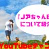 【YouTube】コーギー好き必見チャンネル!?『ノアちゃん日記/Noa's diarly』について紹介!