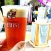 谷中『ひゃっこい祭り』2日目 子どもびっくり市&お昼から生ビールと焼き鳥
