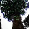 かみさまに会いに行く遠足 ~日光編2 樹木の精霊さんたちと話す