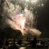 芝生で寝転びながら花火鑑賞。日本平まつりの花火大会に行こう!