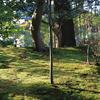 意外と多い!新潟の日本庭園を紹介します