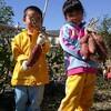 さつま芋栽培は「植える」より「芋ほり」こそ、子供が喜ぶ食育行楽