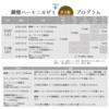 【受講・出演者募集】7/27鍵盤ハーモニカゼミ+(Plus) @大阪