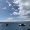 ガラパゴス諸島の周り方、ツアーの選び方