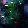 2020年5月23日、ふたご座新月。現実的な思考力が、目指す星を見上げるエネルギーをくれる。