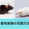 動物実験について考えること・動物実験の克服方法