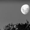 【夜と霧】=「創造する喜び」を別の世界への通路として紡ぐこと。