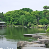 清澄庭園 〜亀の産卵〜