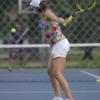 2017テニス ウインブルドン選手権を見て