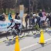 サイクルチャレンジカップ藤沢(CCCF)男女混合総合優勝 レースレポート