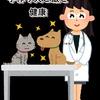 手作り犬ご飯で犬が長生きするの?手作りご飯のじょうずな取り入れ方
