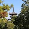 斑鳩で『法隆寺』を歩いてみた in奈良