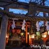 京都 祇園白川散歩!