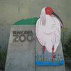 600mmの望遠レンズを持って石川動物園に行ってきたので写真を上げてみる