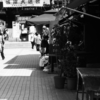 ぶらり独りウォーキング江東区〜墨田区〜台東区 その1