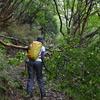 台風一過の剣山遊山 風の道