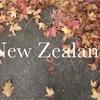 ニュージーランドワーホリ 1ヶ月で一時帰国するかも!?