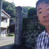 さくら-リベンジ-岡城公園 2013/10/14