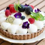 静岡駅周辺でおすすめの絶品ケーキ!種類の豊富なケーキ屋さん3選
