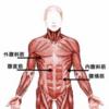 マラソン、トレーニング、日常生活でよく耳にする「体幹」とは??