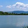 西ノ京薬師寺遠景