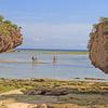 〈忘れ潮〉の沖縄紀行2016…残波の浜①/    オカヤドカリ「ウォーリー」との別れ