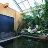 【別府市】陽だまり温泉 花の湯~花と緑の華やかな貸切風呂!再び!