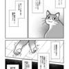 飼い猫が余命宣告されました⑤