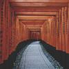京都旅行 伏見稲荷大社