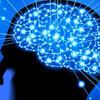 ドーパミンとは 快楽物質 脳内麻薬