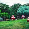 リーフでおでかけ!紫陽花が楽しめる 市民四季の森公園【東海ドライブ】