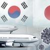 【無ビザ滞在停止?】日韓の入国制限問題