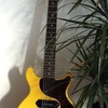 Gibson/Les Paul Jr TV Yellow Fake