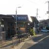 さくら-リベンジ(2回目)-嵐山  2014/11/23