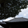 伝香寺参拝『うなぎ川はら三条家奈良店』